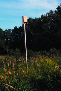 WBU Bat House on pole